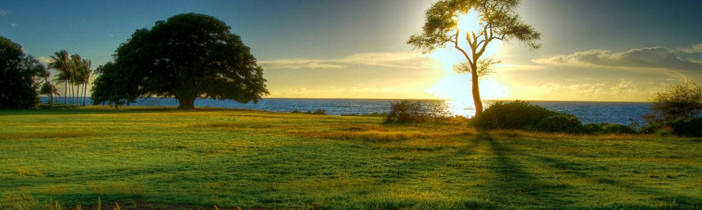 natuurd-achtergrond-in-hd-met-bomen-zee-en-zon